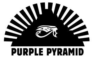 Purple Pyramid Logo med res